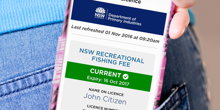 nsw drivers licence check